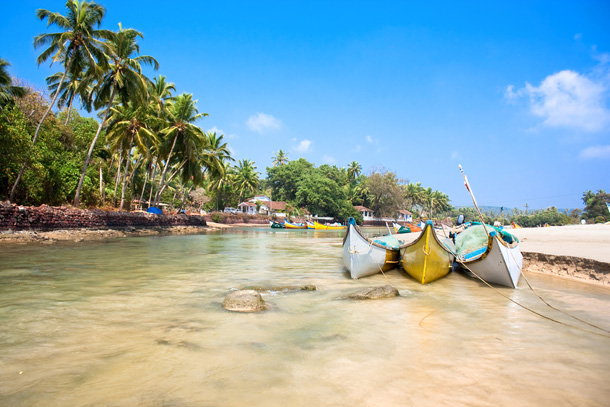 Sail boats and palm trees lining a beach in Goa, India