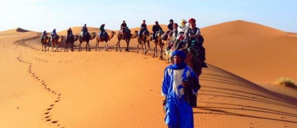 Camel safari through the desert in Morocco