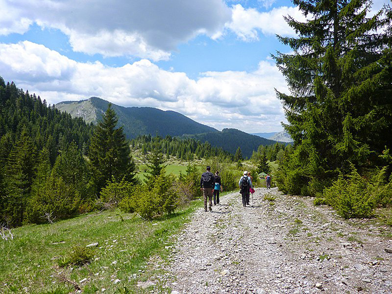 Adventure Travel - Walking the Rodopi Mountains, Bulgaria