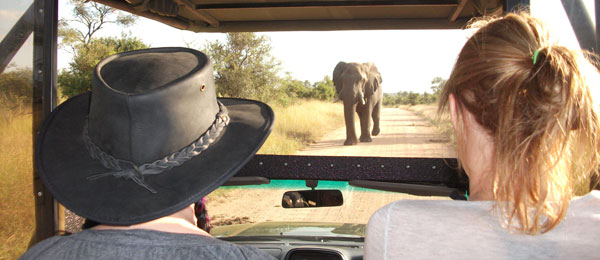 Tourists on a jeep safari, elephants on safari, Africa