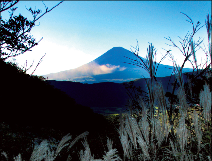 The stunning Mount Fuji